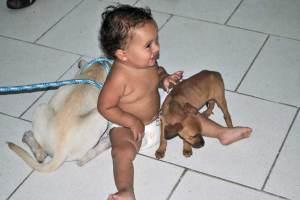 O bebê ficou superfeliz com seus novos amiguinhos. (Foto: Agnelo Quintela)