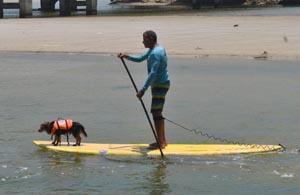 O stand up vem sendo praticado na Lagoa de Saquarema, até com o melhor amigo, o cachorro, nos dias de sol (Agnelo Quintela)