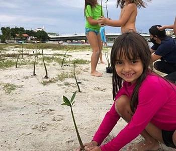 BlueBirdsBR leva crianças à trilha e faz reflorestamento de manguezal