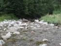 Река Бели Вит в Тетевенския Балкан близо до Рибарица