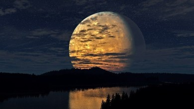 Кои лунни дни са подходящи за зачеване