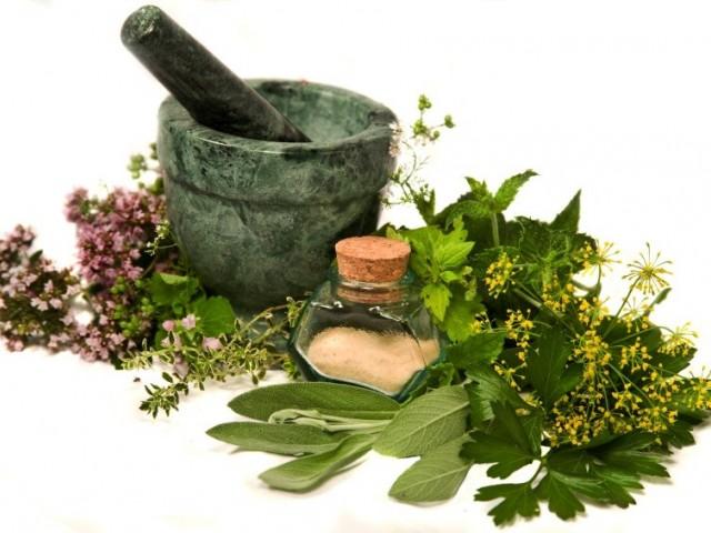 Свойства и ползи на различните билки и подправки