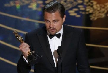 88. Akademi Ödülleri: Kazananlar