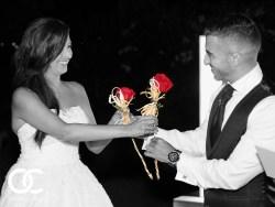 Enlace para ver fotografías de bodas