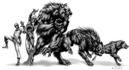 Transformaciones Hombre Lobo