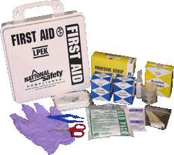 Economy First Aid Kit (up to 50 people)