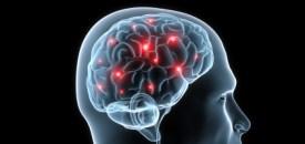 Brain Changes after Body-Mind Meditation