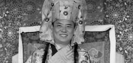 Govind Siddharth's Visit to the 16th Karmapa