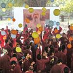 Meditate Celebrate - Oshodham