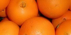 Free Oranges