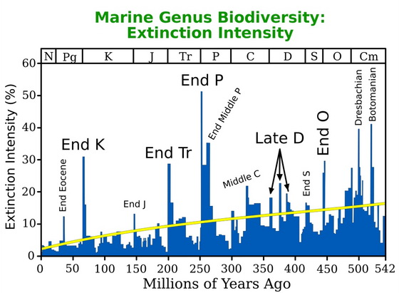 Marine Genus Biodiversity