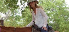 Osho and Horses: the Light on my Path