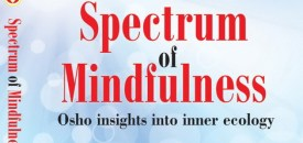 Spectrum of Mindfulness