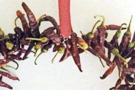 Dry Chilli Heart 1