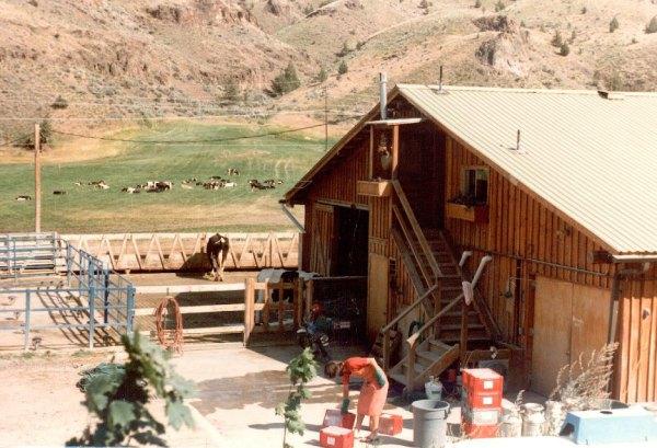 015-jeff-dairy-farm