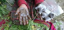 Malana: a Himalayan village shrouded in myth