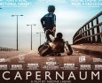 Capernaum – a child's-eye view of a conflicted world