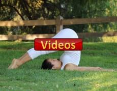 videos Instructora Maritza Rosles Yoga estiramiento reductiva maeditacion relajacion posturas sanacion conexion cuerpo mente
