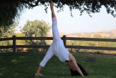 Yoga estiramiento reductiva meditacion relajacion posturas sanacion conexion cuerpo mente Instructora Maritza Rosales 039