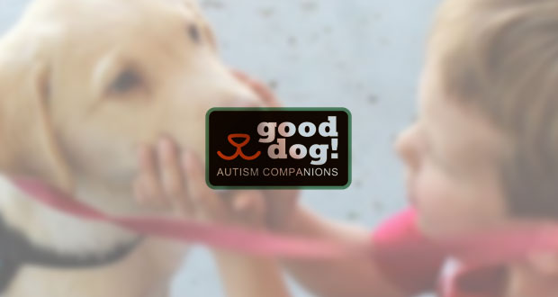 Local Service Dog Organization Goes Online Due To Global Pandemic Osidenews