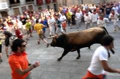 A Festa do Boi 2014, do 14 ao 22 de xuño en Allariz