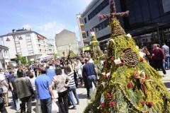 Multitudinaria festa dos Maios no Barco