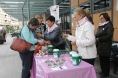 Día contra o cancro de mama, no Barco