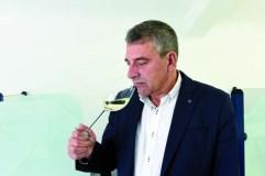 """""""Valdeorras ten que ir ao concepto de viño boutique"""""""