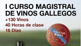 Monterrei, presente no I Curso Maxistral de Viños Galegos, na Coruña