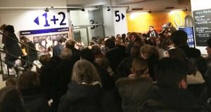 """Exitosa estrea de """"Lobos sucios"""" en Berlín"""