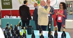 VII Vinis Terrae, cita cos viños galegos en abril en Ourense