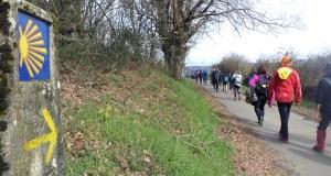 Uns 130 peregrinos do Bierzo, Valdeorras, Monforte e Lalín completan a X etapa do Camiño de Inverno