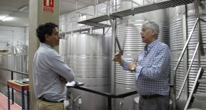 """Os importadores alemáns destacan a """"coidada presentación"""" dos viños de Valdeorras"""