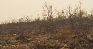 A pegada do lume en Chandrexa de Queixa