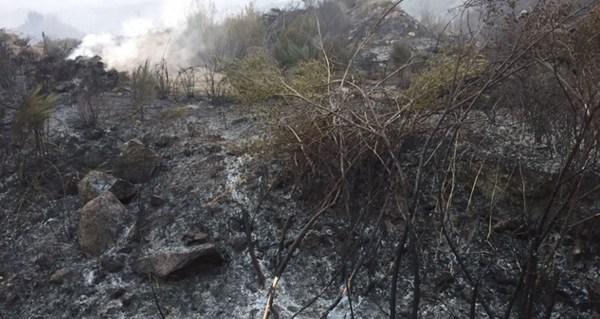 Controlado o incendio de Viana do Bolo