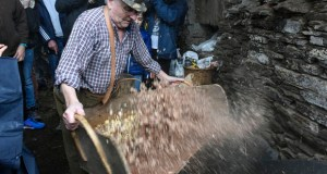 Froxán recrea o labor tradicional da pisa da castaña seca e do abandoxado