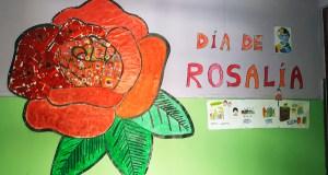 Unha rosa para lembrar a Rosalía de Castro, no CEIP Condesa de Fenosa
