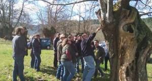 A recuperación de castiñeiros e o cooperativismo, eixe dunha xornada formativa en Sober