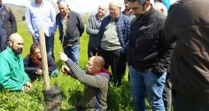 O curso de poda e enxerta de castiñeiros de Trives reúne a medio cento de persoas