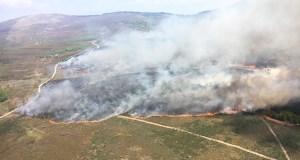 Incendio forestal en Seoane de Argas (San Xoán de Río)