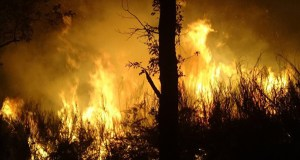 Charlas en Trives e no Barco sobre a nova normativa en materia de incendios forestais