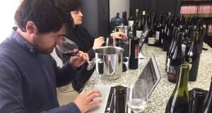 """Os catadores da """"Guía Peñín"""" valoran os viños de Valdeorras e da Ribeira Sacra"""