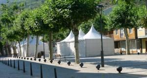 A XXI Feira do Viño de Valdeorras vai collendo forma