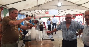 2ª Feira da Cervexa Artesá, na praza Maior de Viana do Bolo