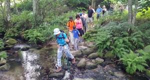 Entre a natureza e a cultura na IV ruta de sendeirismo familiar do verán en Trives
