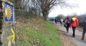 O alcalde de Monforte denuncia que a Xunta retrasa a promoción do Camiño de Inverno ata o 2020