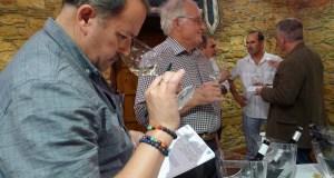 Xornalistas especializados en viño de diferentes partes do mundo visitan Valdeorras