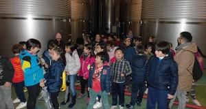 Alumnos do CEIP Condesa de Fenosa descubren o proceso de elaboración do viño