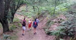 """Trives celebra o """"Día das Montañas"""" cunha ruta de sendeirismo familiar ata Ponte Navea"""