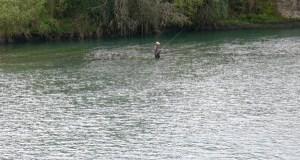Ábrese a tempada de pesca fluvial